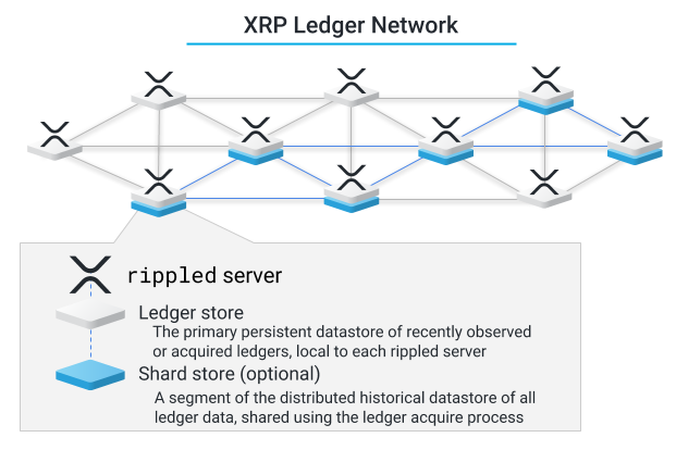 XRP Ledger Network: Ledger Store and Shard Store Diagram